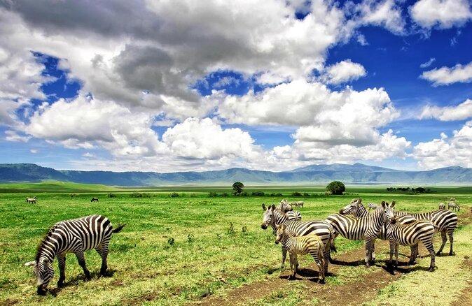 7 Days Tanzania Safari
