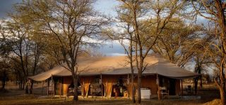 Serian's Serengeti Camp