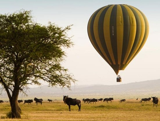 3 DAYS SERENGETI BALLOON SAFARI