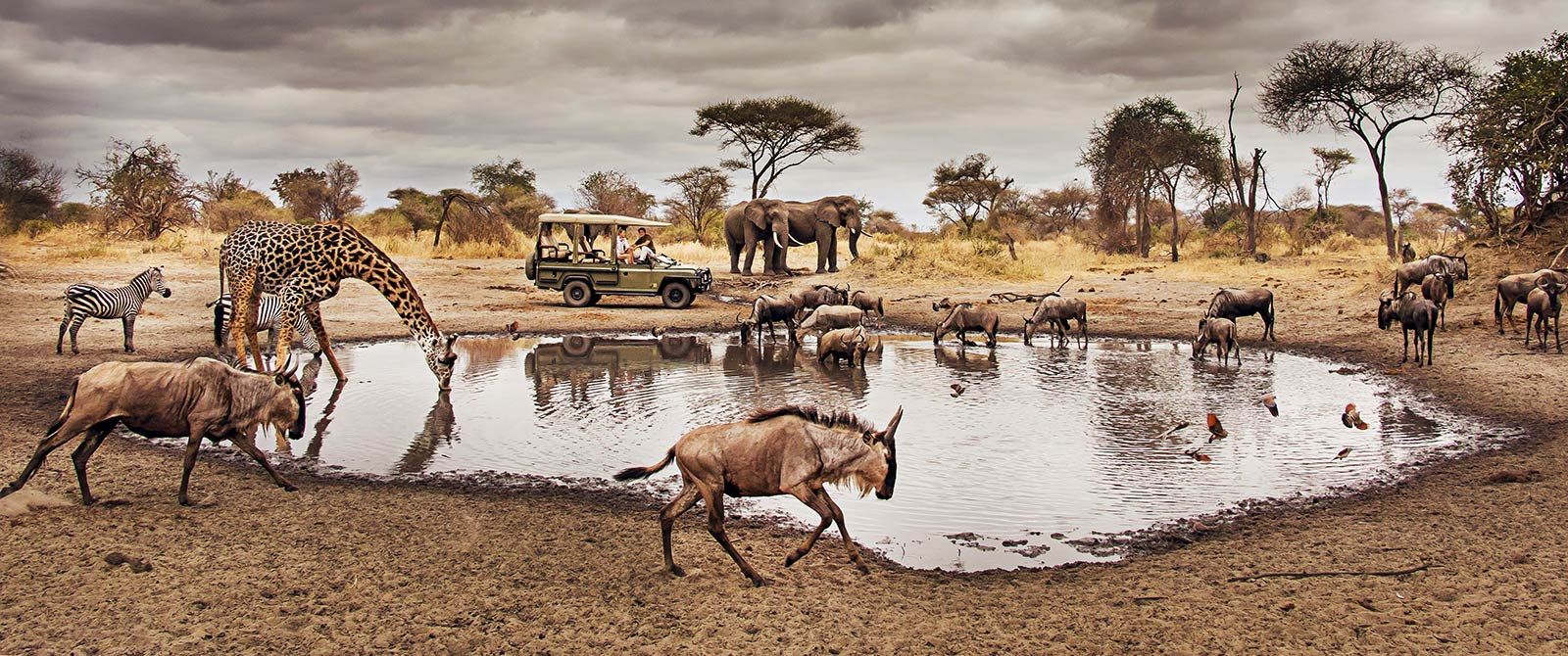 9 Facts About Serengeti National Park