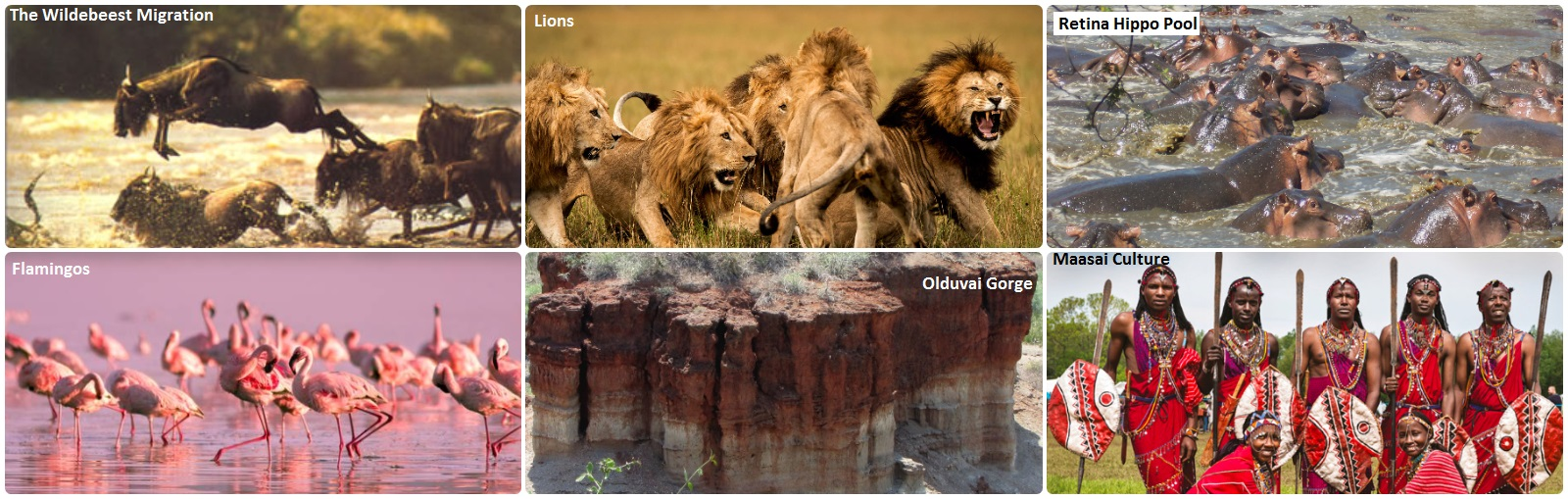 attractions in serengeti national park