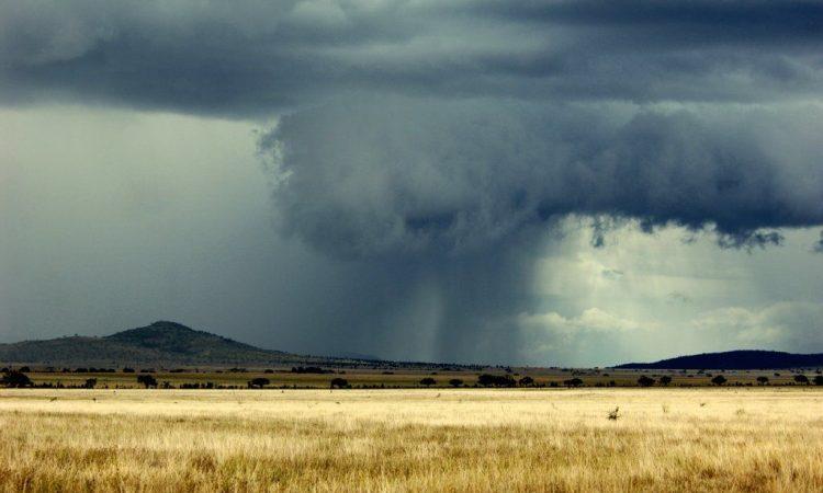 Weather of Serengeti National Park