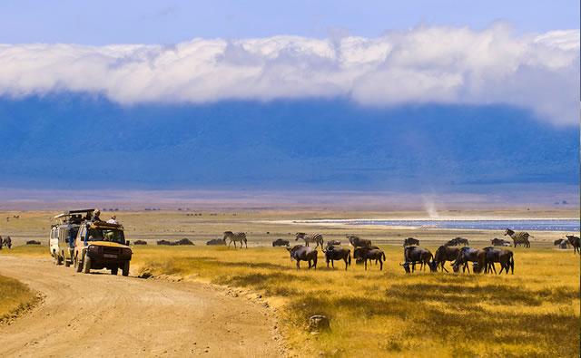 4 Days Serengeti and Ngorongoro safari