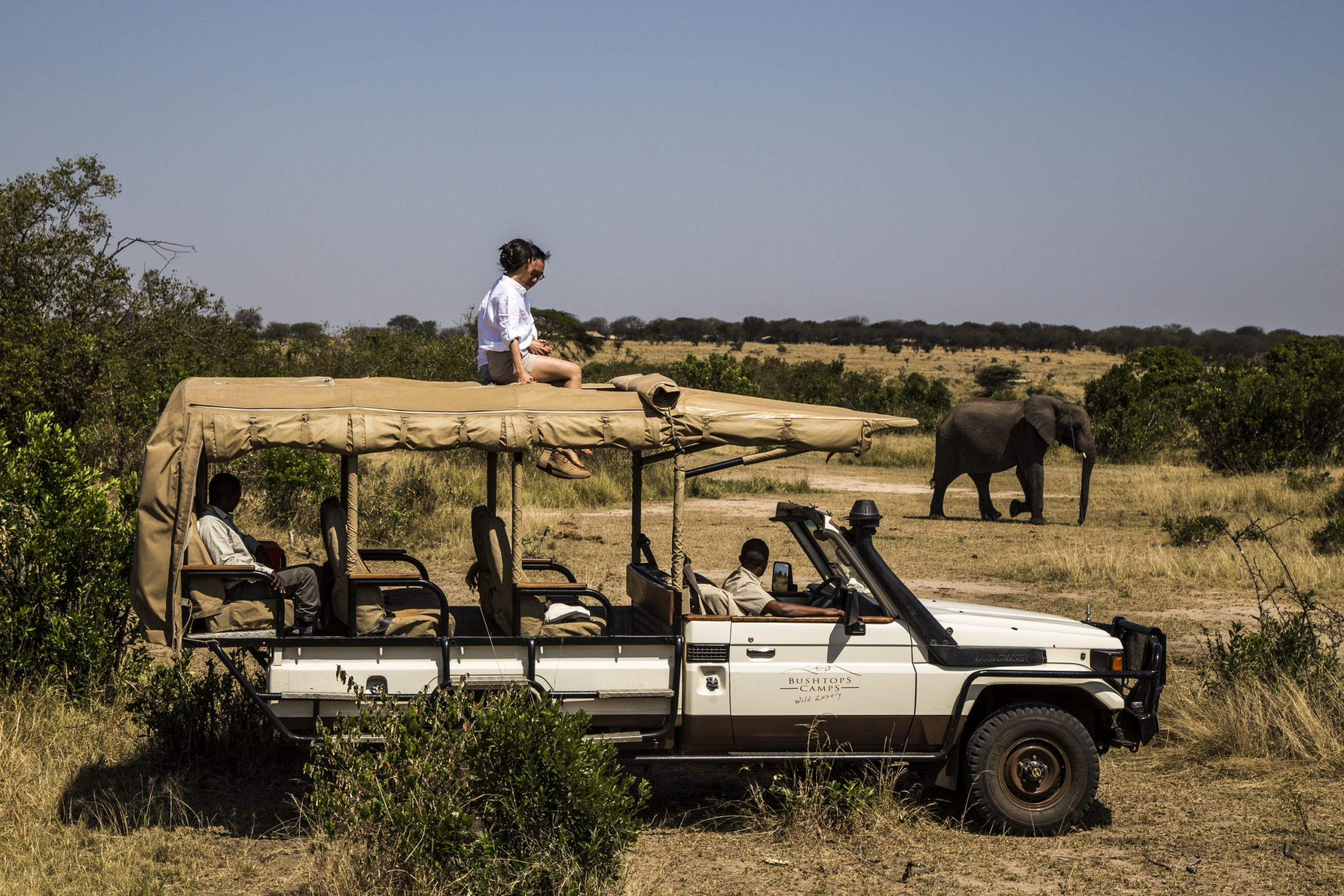 Serengeti national park wildlife safaris