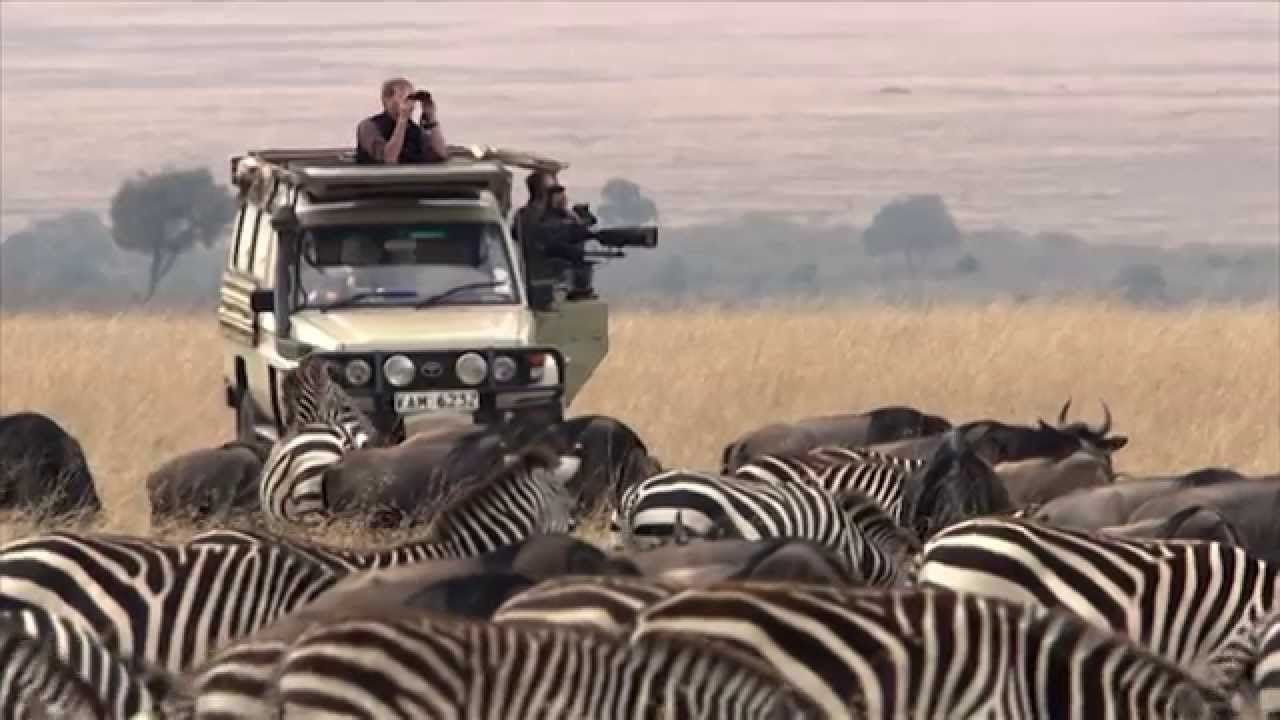 Serengeti National Park Holiday Packages