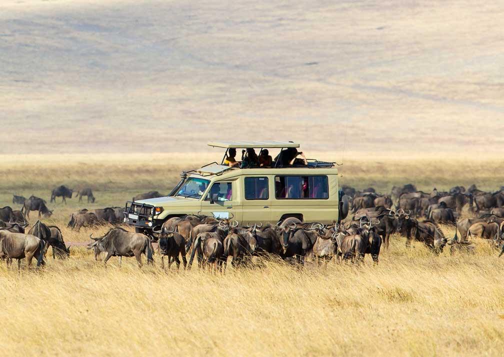 20 Days Uganda, Kenya & Tanzania safari