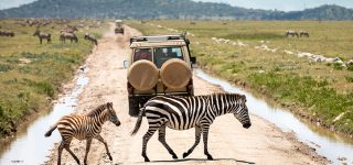 10 Days Serengeti and Mt Meru safari