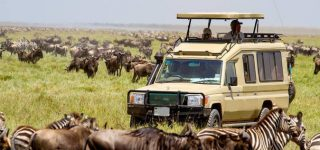 5 Days Serengeti and Ngorongoro Wildlife Safari