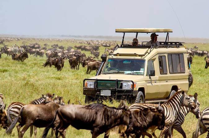 5 Days Serengeti and Ngorongoro Wildlife Safari