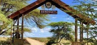 Serengeti National Park Entry fees for 2021