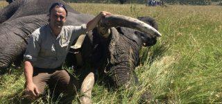 Poaching in Serengeti National Park