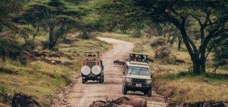 Tanzania Safaris in 2021