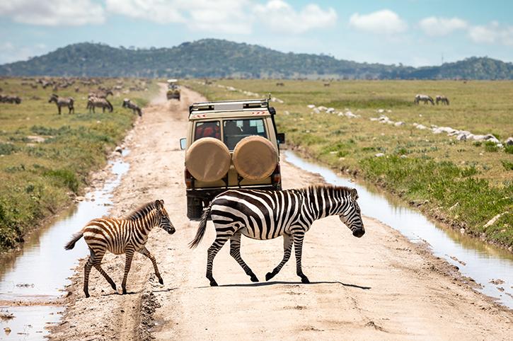 4 Days Tarangire & Serengeti safari