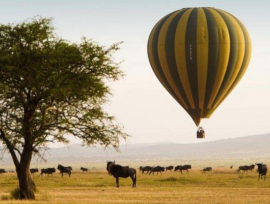 Serengeti National Park Balloon Ride
