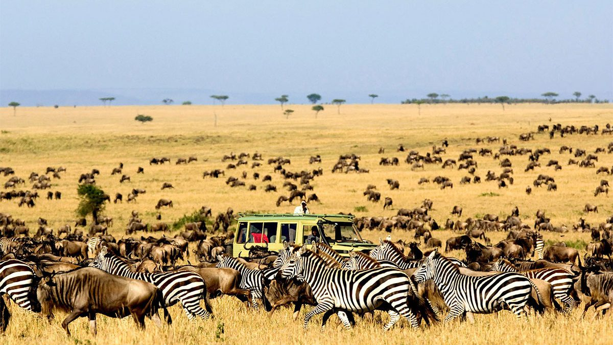 New Park fees for Tanzania