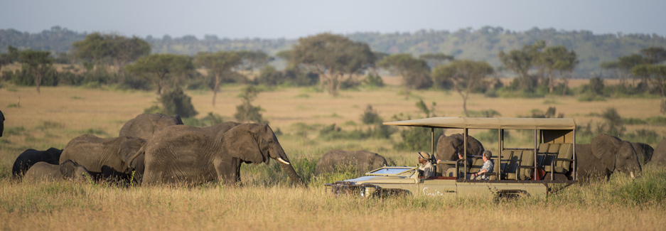 Luxury Serengeti safaris